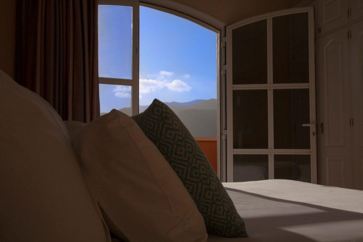 Апартаменты с двумя спальнями и террасой (2-4)